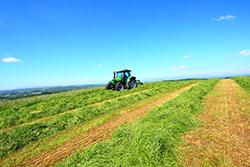 Haymaking in Sotland